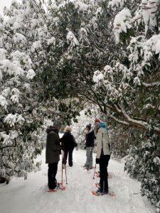 sneeuwracket lopen